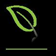 Woodland Carbon Trust Logo